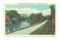 SACANDAGA RIVER NEAR SPECULATOR NEW YORK, ADIRONDACK MOUNTAINS VINTAGE POSTCARD