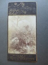 Antique CHRISTMAS Card Real Photograph Ferns & Woodland Scene Victorian