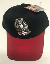 NEW Minor League Sacramento River Cats Baseball Cap