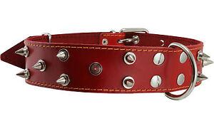 "Genuine Leather Dog Collar Spiked 22""-26"" neck XXLarge Mastiff Cane Corso"