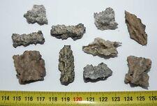 lot de 10 Fulgurites ( meteorite - Tectite - 017  )