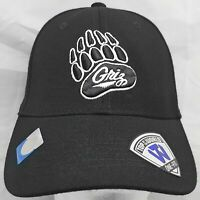 Montana Grizzlies NCAA Top of the World M/L flex cap/hat