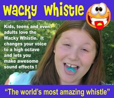 Wacky Whistles - Birthday Party Favor Gift Toy Boys Girls Fun Novelty Clown