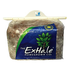Exhale Co2 Bag Mushroom Homegrown Natural Generator
