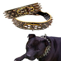 Large Dog Collar Studded Gold Croc Leather M L XL Wide - Stud Spike Spiked  Pet
