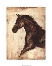 Weathered Equestrian Ethan Harper Fine Horse Art Print Poster Home Decor 715996