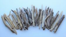 Treibholz Schwemmholz  Driftwood 40 Ästchen Terrarium Dekoration 15-27 cm 27
