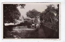 CENTRAL AVENUE, CAMBUSLANG: Lanarkshire postcard (C18263)