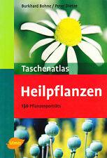 Taschenatlas Heilpflanzen. Heilkräuter, Drogen, Kräutergarten, Garten-Kräuter..