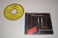 Chris Hinze Feat. Sigi Schwab - Baroque By Candlelight / Keytone 1987 / Rar