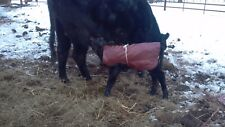 Baby Calf Saver Coat Blanket Size 80-100 lbs check out other sizes