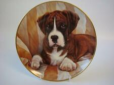 DANBURY MINT THE BOXER DOG THE LOOK PLATE