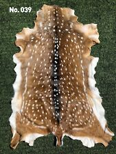 "Axis Deer Chital Hide Rug Size 57"" HUGE RARE SIZE"