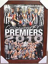 COLLINGWOOD 2010 PREMIERS AFL PRINT POSTER FRAMED - DANE SWAN, SCOTT PENDLEBURY