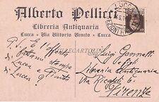 LUCCA - Alberto Pellicci - Libreria Antiquaria 1931