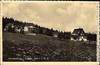 Oberbärenburg im Erzgebirge alte Ansichtskarte 1941 Teilansicht mit Blumenwiese