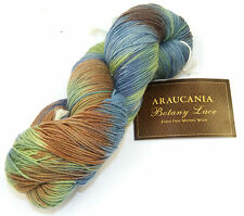 Araucania Botany Lace #PT1656 100g skeins  Hand-dyed 100% Wool SALE 48% Off RRP