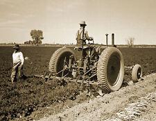 "1942 Farmers Digging Carrots, Yuma County, Arizona Old Photo 8.5"" x 11"" Reprint"