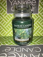 Pine Cone & Tassel Yankee Candle 623g 22oz Large Jar - Brand New Genuine