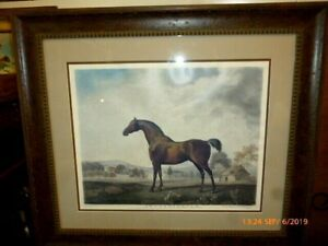 """George Stubbs """"Sweet William"""" Horse Lithograph"""