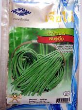 Big Yard long bean snake climb vegetable 60 seeds organic tropical garden plant