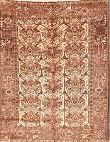 Excellent Geometric Ivory Gharajeh Handmade Wool Area Rug 5'x6' Oriental Carpet