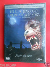 dvd,film,movie,un lupo mannaro americano a londra,an american werewolf in london