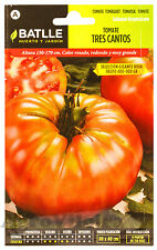 Tomate Tres Cantos Gigante - 350 Semillas (1 g) - Sobre Hermético Batlle