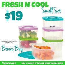 Tupperware Fresh and Cool Small Set