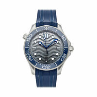 Omega Seamaster Diver 300m Chrono Auto Steel Mens Watch 210.32.42.20.06.001