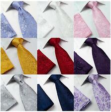 Mens Jacquard Paisley Woven Silk Necktie Wedding Hanky Tie or Set Red Pink Blue