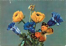 Flowers & butterfly postcard