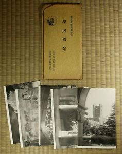 Vintage Postcard / Tokyo University / Set of 5 / Japanese / c. 1950s