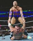 WWE Wrestling OFFICIAL LICENSED PHOTO FILE GLOSSY PROMO 8x10 Daniel Bryan