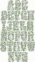 ABC Embroidery Designs Wild Vine Monograms machine embroidery designs