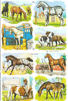 1 Bogen Glanzbilder Poesie Pferde MLP 1532 Nr.247