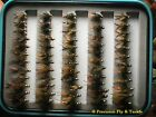 72 Royal Flush In Fly Box - Trout Wet Flies - Fly Fishing Flies US Veteran Owned