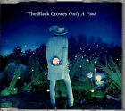 BLACK CROWES Only A Fool CD Single PROMO DJ x RADIO