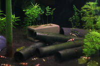 Bamboo Shelter x5 - Cherry Crystal Red Shrimp Pleco Aquarium