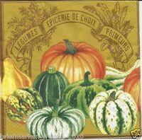 3 Servietten Napkins Herbst verschiedene Kürbissorten Kürbis Farbe braun #18