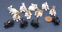 1:12 Scale Dolls House Miniature Single Resin Rabbit Garden Animal Pet Accessory