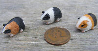 1:12 Scale Dolls House Miniature Single Resin Guinea Pig Garden Accessory Type D