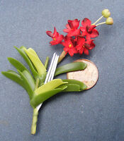 A Large Single Red Orchid Dolls House Miniature Flower Garden Accessory L2
