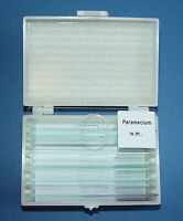 Set of 10 Prepared Microscope Slides from Single celled Organisms,  New Cased