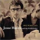 HARRIS JESSE AND THE FERDINANDOS- WHILE THE MUSIC.. CD.