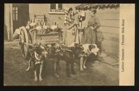 DOG CART Laitiere Flamande Flemish Milk-Maid early PPC