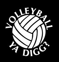 Volleyball YA DIGG? Vinyl Sports Decal 8182