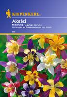 Kiepenkerl -  Akelei 887 * Mischung * Winterhart für Staudenbeete