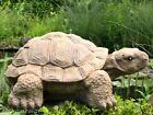 Steinfigur Schildkröte Dekofigur Gartenfigur Gartendeko Steinguss frostfest