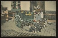 DOG CART Laitiere Flamande Belgium early u/b PPC